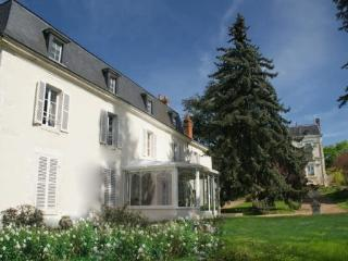 DOMAINE DE LA THIAU, a B&B close to Gien Briare Sancerre only 150km south of Paris - Loire Valley vacation rentals