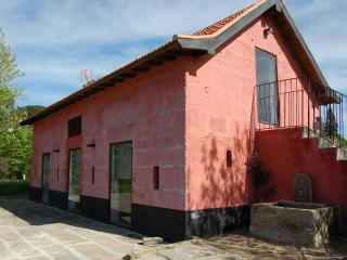 Cottage in a vineyard - 30 km from Oporto - Penafiel vacation rentals