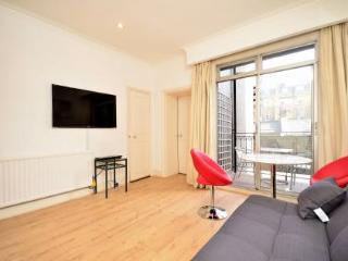 South Kensington superb apartment and location - Worthing vacation rentals