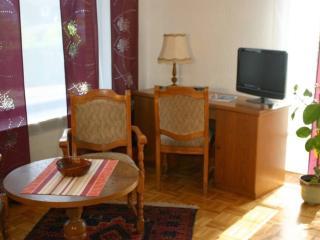 Vacation Apartment in Wolfenbüttel - 1292 sqft, quiet location, central, close to nature (# 3901) - Bad Harzburg vacation rentals