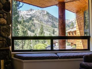 Panoramic Squaw Valley Views Condo - Truckee vacation rentals