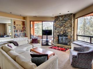 Walk to skiing and the Village - dog-friendly with great views! - Olympic Valley vacation rentals