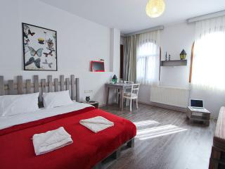 New Palette Flat at Great Location - Istanbul vacation rentals