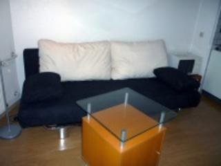Lovely appartment near the centre of Düsseldorf - North Rhine-Westphalia vacation rentals