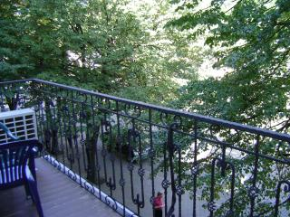 the apartment with a balcony on Deribasovskaya St - Odessa vacation rentals
