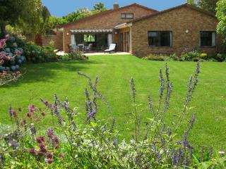 Beautiful garden, privacy, luxury, central position - Constantia vacation rentals
