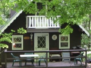 Remodeled 3BR/1BA Mountain Top, Lake House Chalet - Monticello vacation rentals