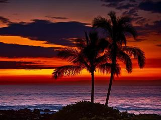 STOP LOOKING! We are AT the beach,30 sec. to waves - Lihue vacation rentals