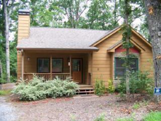Welcome to Wildwood ~Pet Friendly & quiet retreat - Ellijay vacation rentals