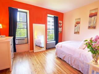 ADORABLE 1 BDRM TRENDY UPPER EAST! - New York City vacation rentals