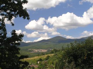 Beautiful Rental Farmhouses in Tuscany - Santa Fiora vacation rentals