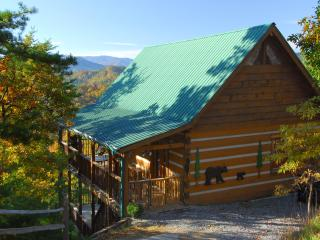 OPEN Early MAY! Stunning Views, Comfy porch, Private, Kg Bds, amenities! - Wears Valley vacation rentals