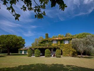Bright 6 bedroom House in Capalbio - Capalbio vacation rentals