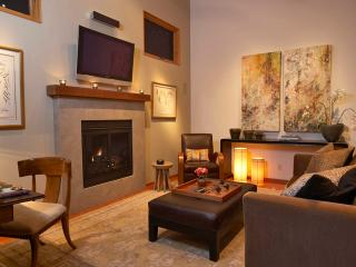 Romantic Modern Wine Country Carriage House - Forestville vacation rentals