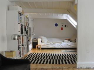 Amaliegade - Neighbour To The Queen - 382 - Denmark vacation rentals