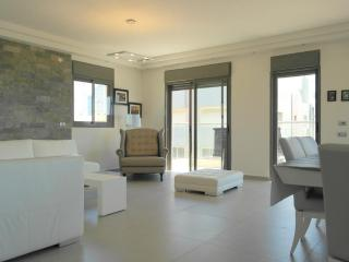 Luxury Sea View Apartment Tel-Aviv Up to 10 Pers - Tel Aviv vacation rentals