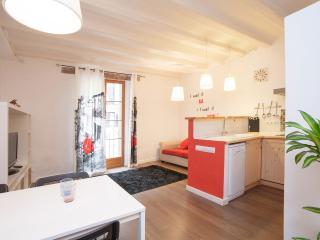 Centrico & Confortable Piso - WIFI - Barcelona vacation rentals