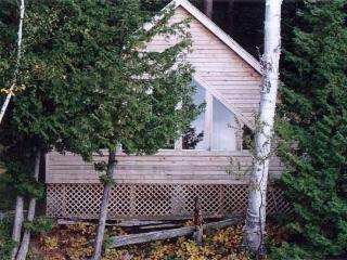 Comfortable Cabin with Paper Towels Provided and Grill - Barnet vacation rentals