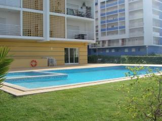 New 2 bedroom with pool to rent in Portimão - Algarve - Portimão vacation rentals