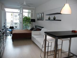 Beautiful studio uniquely located! - Buenos Aires vacation rentals