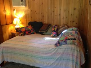 Rum Island Cabin on the Santa Fe River, Florida - Fort White vacation rentals