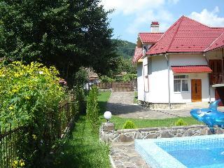 Luxury Cottage -Carpathian Mountains - Mukachevo vacation rentals