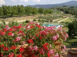 LUXURY 13th century CONVENT  W/POOL: Perfect for groups + family reunion + WEDDINGS - Umbria vacation rentals