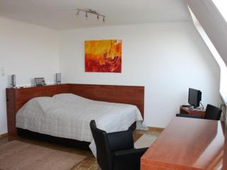 Cozy 1 bedroom Vienna Apartment with Internet Access - Vienna vacation rentals