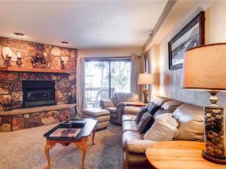 Atrium Condo #002 - Breckenridge vacation rentals