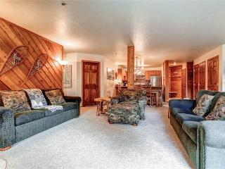 Economic Breckenridge 1 Bedroom Walk to lift - C209B - Breckenridge vacation rentals