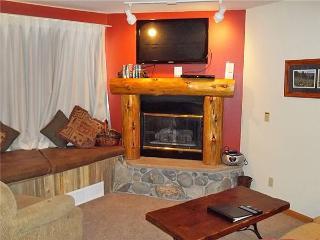 Elegant Breckenridge 2 Bedroom Ski-in - RE217 - Breckenridge vacation rentals
