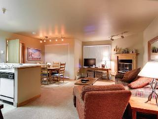 1 bedroom House with Internet Access in Breckenridge - Breckenridge vacation rentals