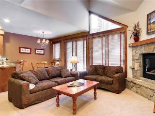Affordably Priced Breckenridge 3 Bedroom Ski-in - SWI41 - Breckenridge vacation rentals