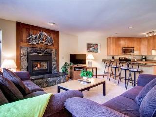 Convenient Breckenridge 2 Bedroom Ski-in - TB2D - Breckenridge vacation rentals