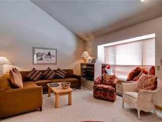 Appealing Breckenridge 3 Bedroom Ski-in - TC338 - Breckenridge vacation rentals