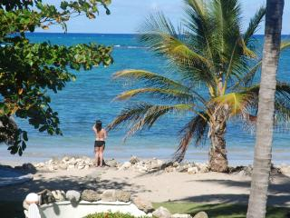 The Best kept Secret...Ocean front private Villa - Puerto Plata vacation rentals