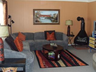 Chautauqua Lake area cottage.... - Chautauqua Allegheny vacation rentals