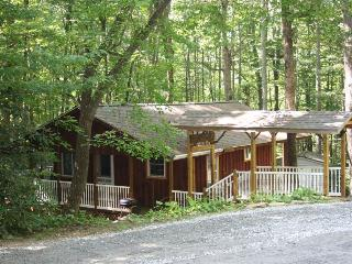 Falling Water Cottage on Stream! - WiFi - Fenced - Saluda vacation rentals