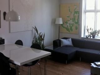 Copenhagen apartment located near the Central Station - Copenhagen vacation rentals
