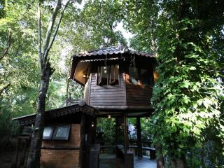 Tree House Nature stay close to city center - Chiang Mai vacation rentals