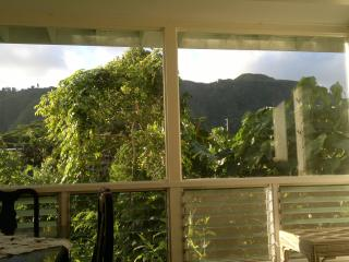 Two bedroom apartment-lush, tropical mountain view - Honolulu vacation rentals