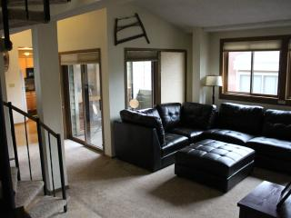 Breckenridge, CO  Luxury Ski Condo - Ski In/Out - Saint Thomas vacation rentals