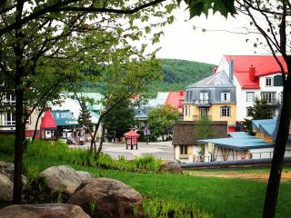 Cozy Condo with Internet Access and A/C - Mont Tremblant vacation rentals