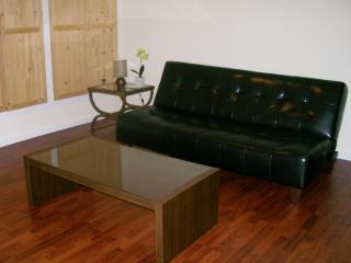 Affordable Studio in Maple Ridge, BC - Sebring vacation rentals