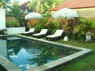 LOW COST BELLA VILLA IN A PERFECT LOCATION - Seminyak vacation rentals