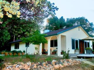 Luxurious home near Yosemite on private mountain - Midpines vacation rentals