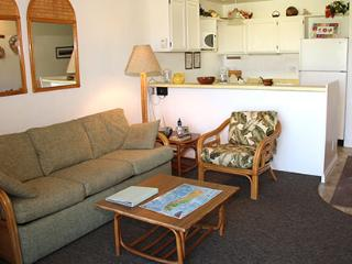 Nice Condo with Internet Access and Shared Outdoor Pool - Kaunakakai vacation rentals