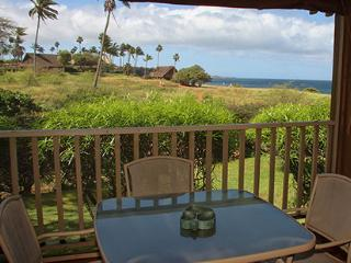 Nice Condo with Internet Access and Grill - Maunaloa vacation rentals
