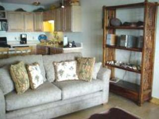 1 bedroom Condo with Internet Access in Ualapue - Ualapue vacation rentals