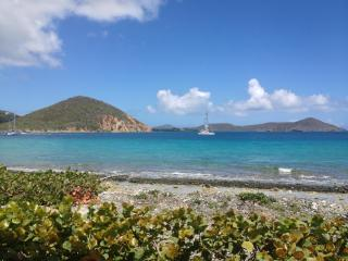 Oceanfront with amazing views! - Saint Thomas vacation rentals